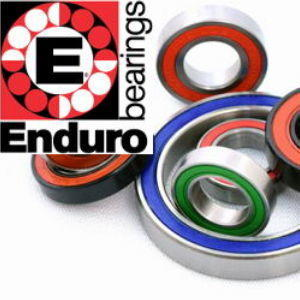 Enduro-Bearings